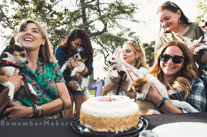 A Puppy Reunion (yes, you heard me right) | The REAL Bark Dog Rescue, Echo Park | LA Event Photography